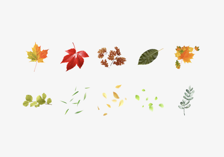 PhotoGrid Stickers Leaves Sticker